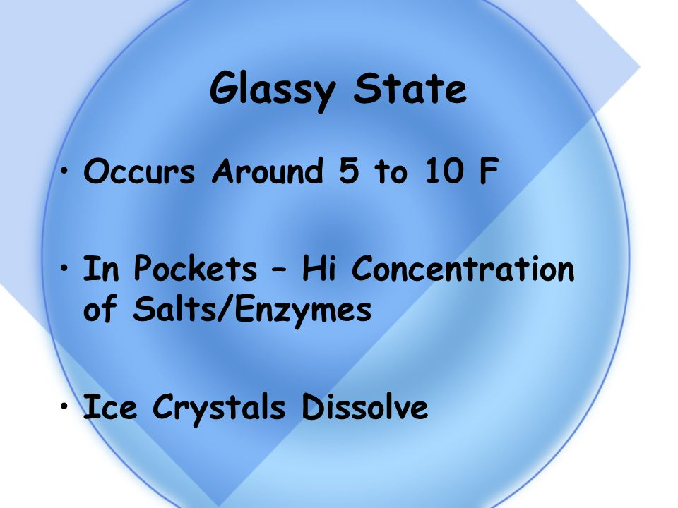 Glassy State Occurs Around 5 to 10 F In Pockets – Hi Concentration of Salts/Enzymes Ice Crystals Dissolve