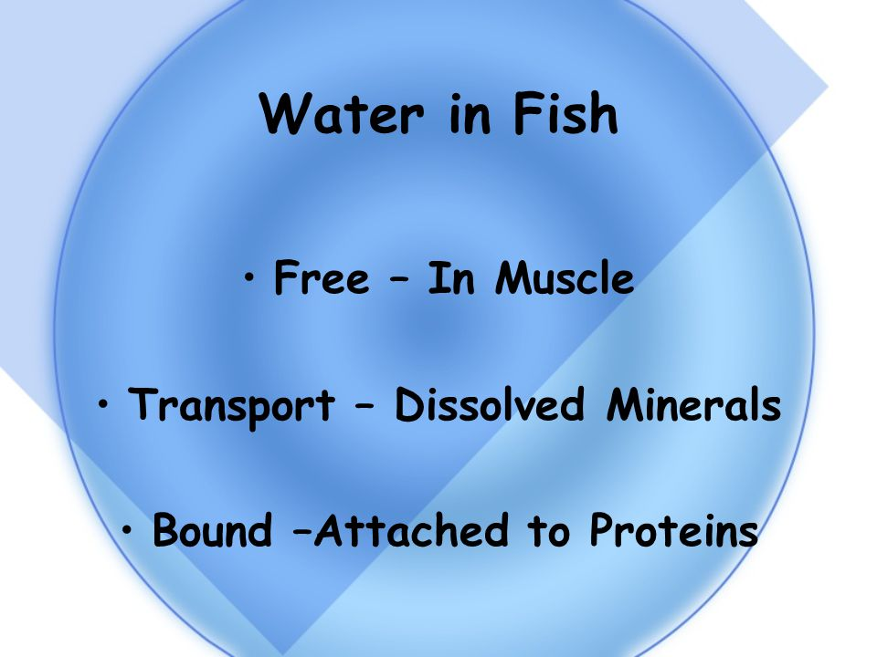 Water in Fish Free – In Muscle Transport – Dissolved Minerals Bound –Attached to Proteins