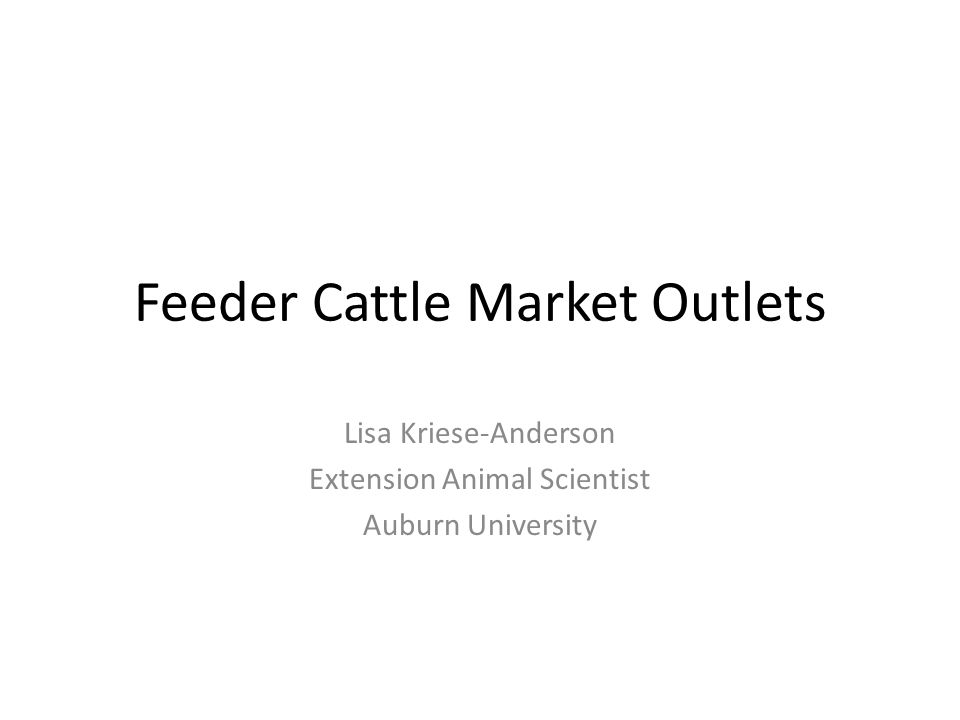 Feeder Cattle Market Outlets Lisa Kriese-Anderson Extension Animal Scientist Auburn University