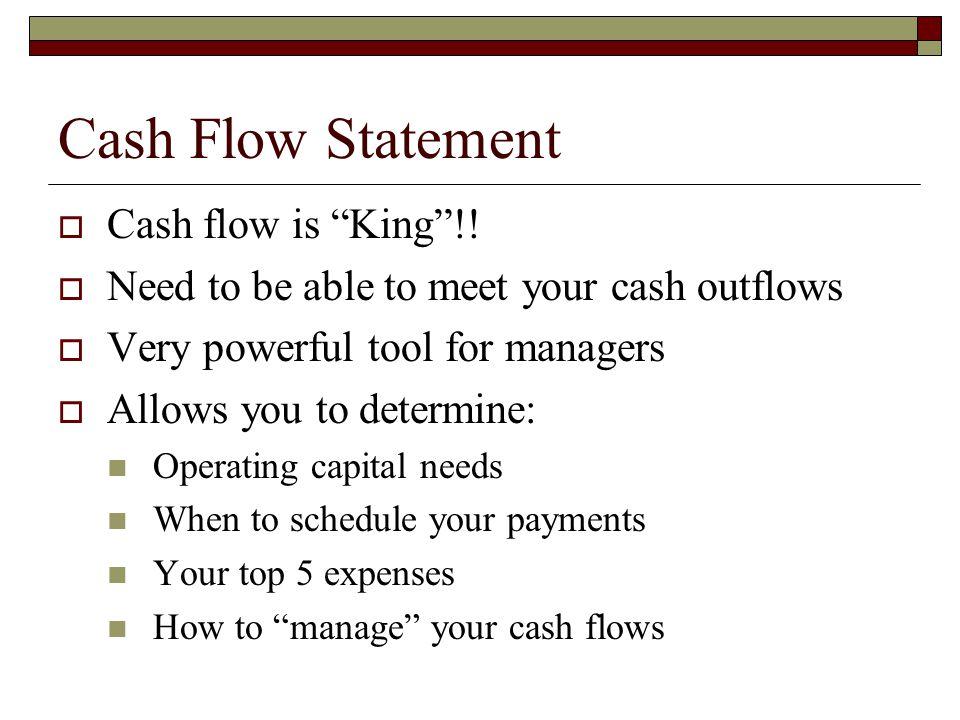 Cash Flow Statement  Cash flow is King !.