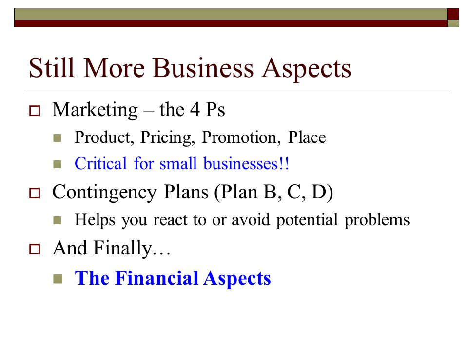 Still More Business Aspects  Marketing – the 4 Ps Product, Pricing, Promotion, Place Critical for small businesses!.