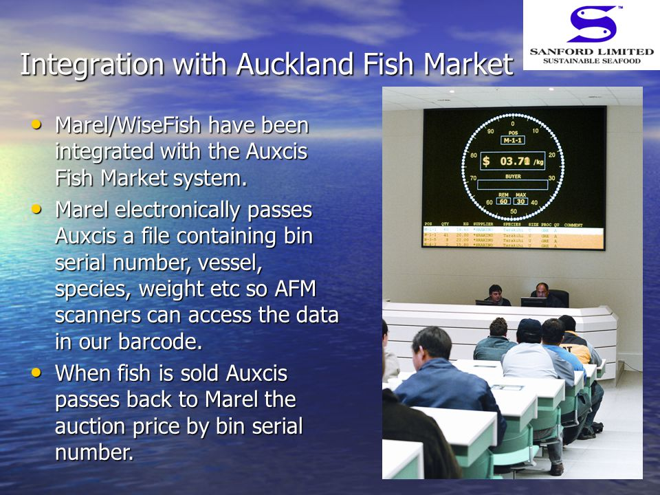 Integration with Auckland Fish Market Marel/WiseFish have been integrated with the Auxcis Fish Market system. Marel/WiseFish have been integrated with