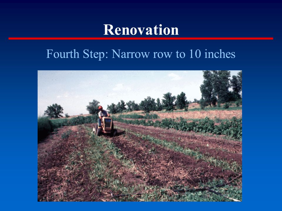 Renovation Fourth Step: Narrow row to 10 inches