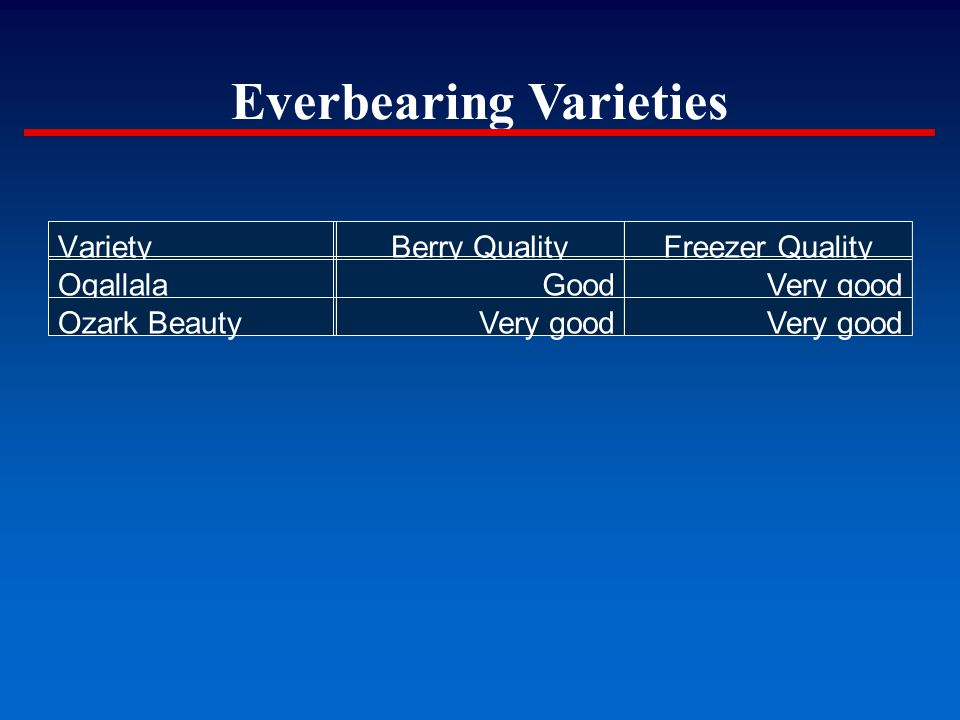 VarietyBerry QualityFreezer Quality OgallalaGoodVery good Ozark BeautyVery good Everbearing Varieties