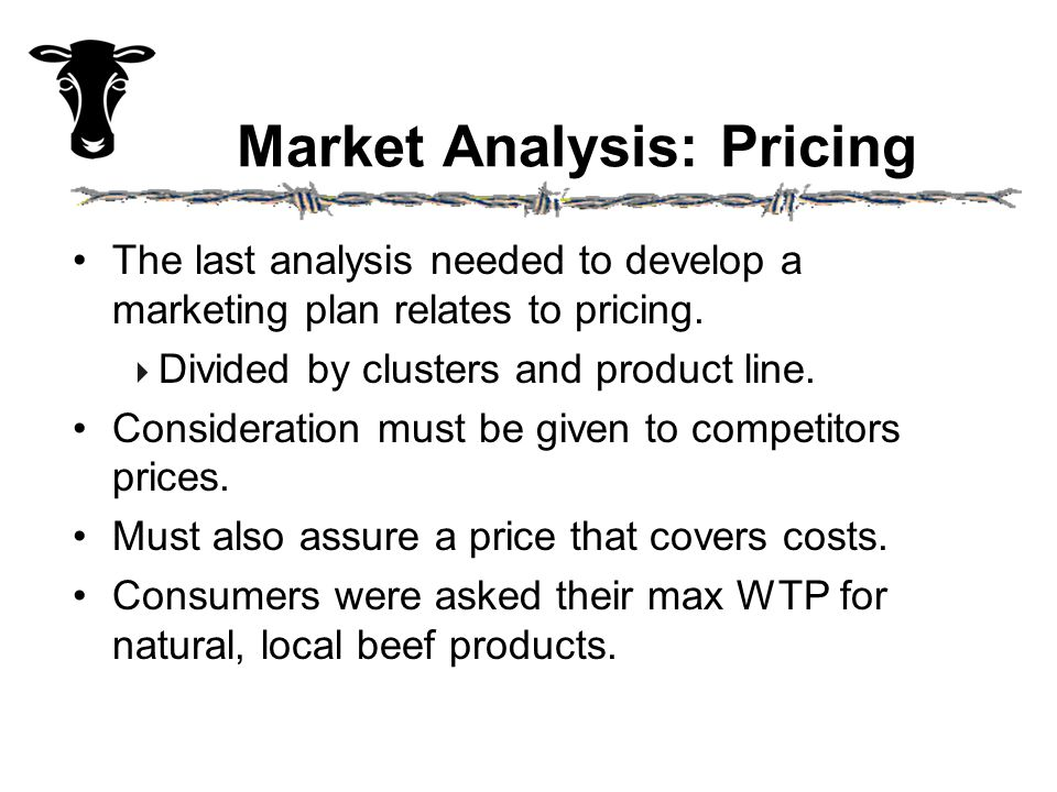 Market Analysis: Pricing The last analysis needed to develop a marketing plan relates to pricing.  Divided by clusters and product line. Consideratio