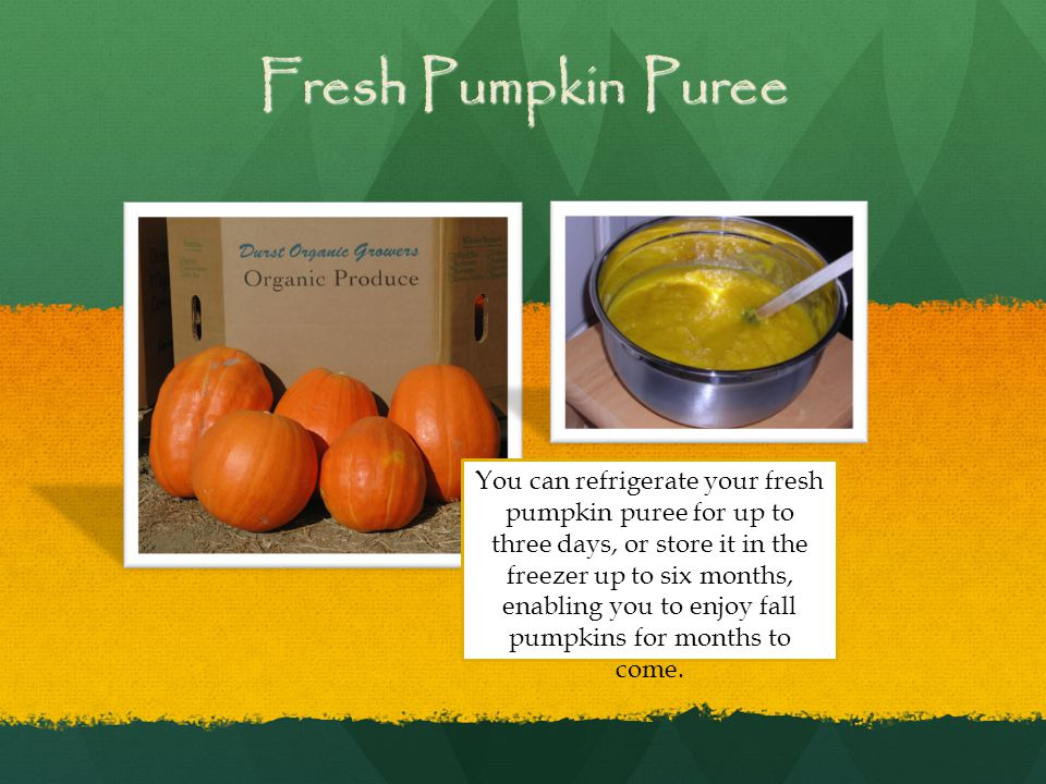 Fresh Pumpkin Puree You can refrigerate your fresh pumpkin puree for up to three days, or store it in the freezer up to six months, enabling you to enjoy fall pumpkins for months to come.