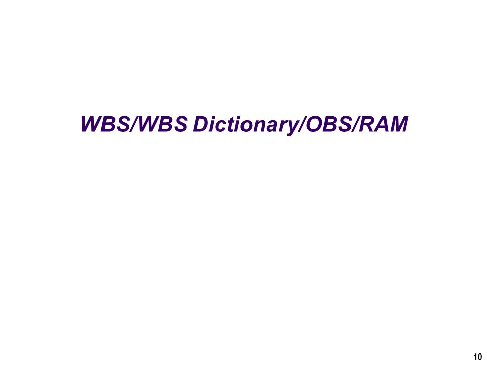 WBS/WBS Dictionary/OBS/RAM 10