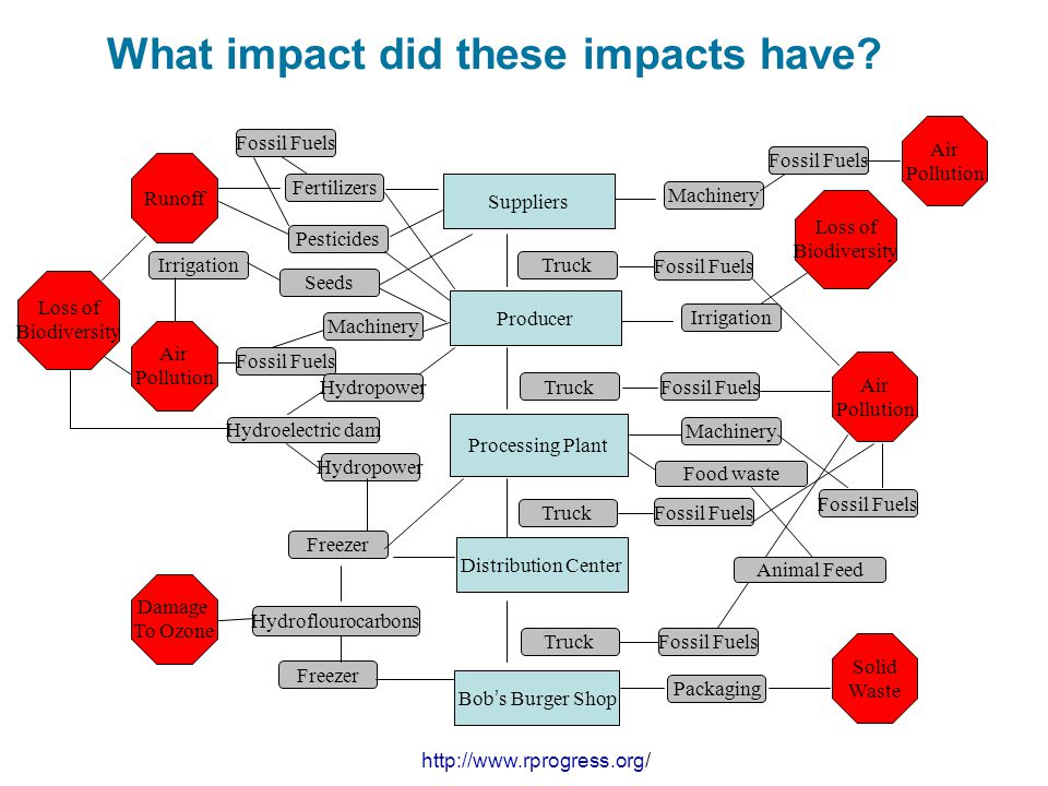 What impact did these impacts have? Runoff Air Pollution Solid Waste Air Pollution Fossil Fuels Freezer Fertilizers Pesticides Truck Machinery Hydropo