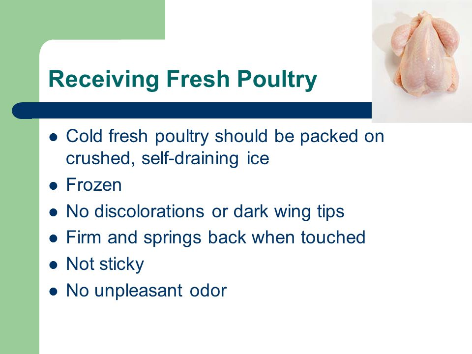Receiving Fresh Poultry Cold fresh poultry should be packed on crushed, self-draining ice Frozen No discolorations or dark wing tips Firm and springs back when touched Not sticky No unpleasant odor