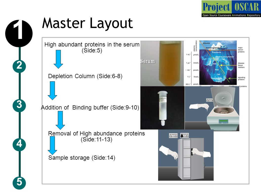 Master Layout 5 3 2 4 1 High abundant proteins in the serum (Side:5) Depletion Column (Side:6-8) Addition of Binding buffer (Side:9-10) Removal of High abundance proteins (Side:11-13) Sample storage (Side:14)