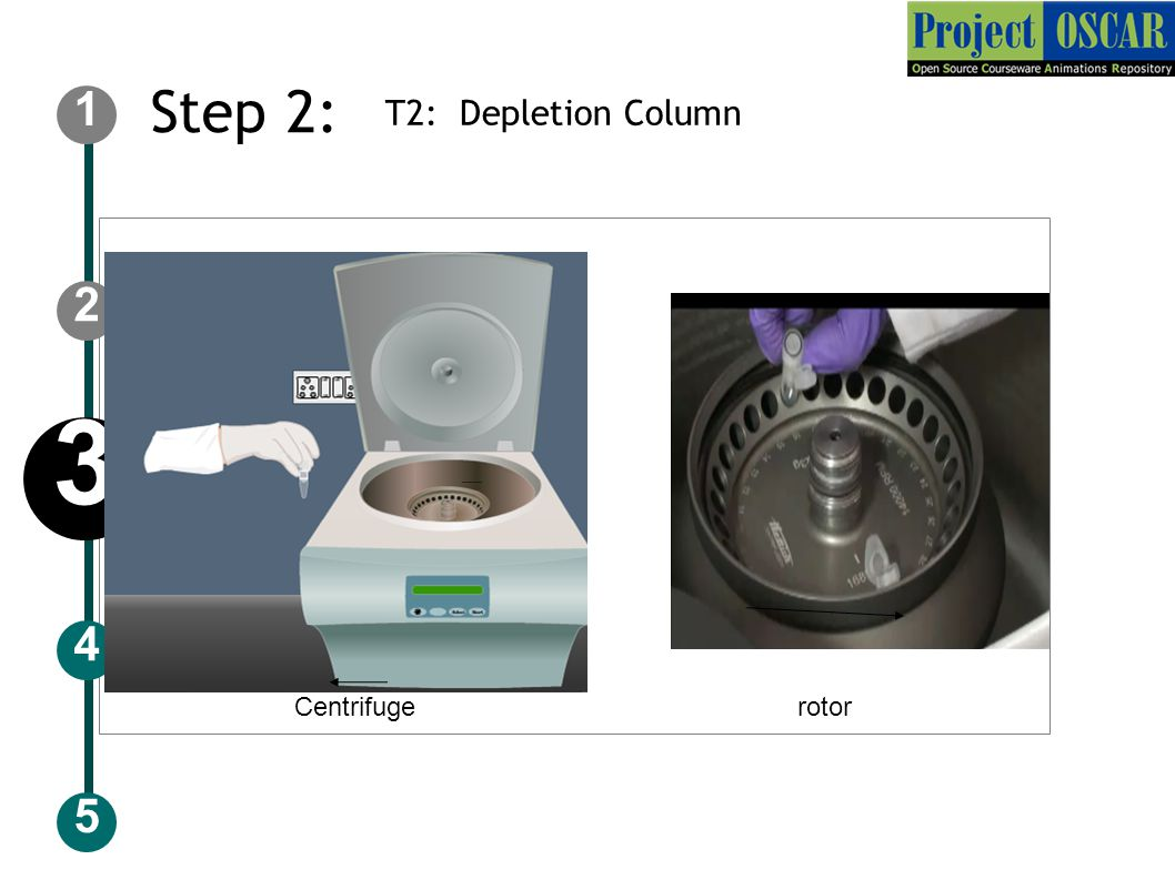 Step 2: T2: Depletion Column ‏ 5 2 1 4 3 Centrifuge rotor