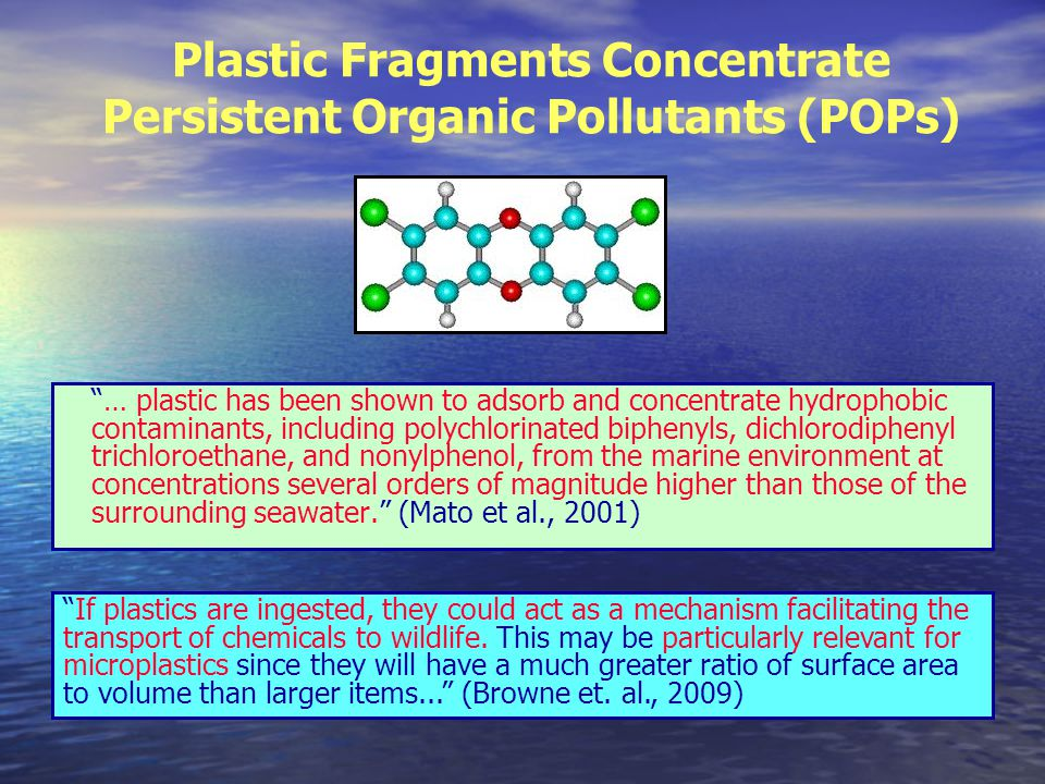 Plastic Fragments Concentrate Persistent Organic Pollutants (POPs) … plastic has been shown to adsorb and concentrate hydrophobic contaminants, including polychlorinated biphenyls, dichlorodiphenyl trichloroethane, and nonylphenol, from the marine environment at concentrations several orders of magnitude higher than those of the surrounding seawater. (Mato et al., 2001) If plastics are ingested, they could act as a mechanism facilitating the transport of chemicals to wildlife.