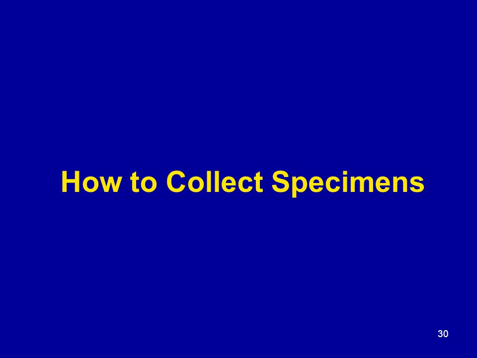 30 How to Collect Specimens