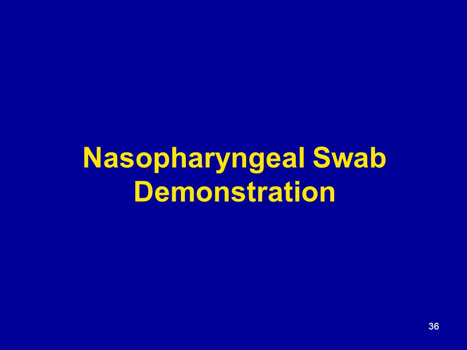 36 Nasopharyngeal Swab Demonstration