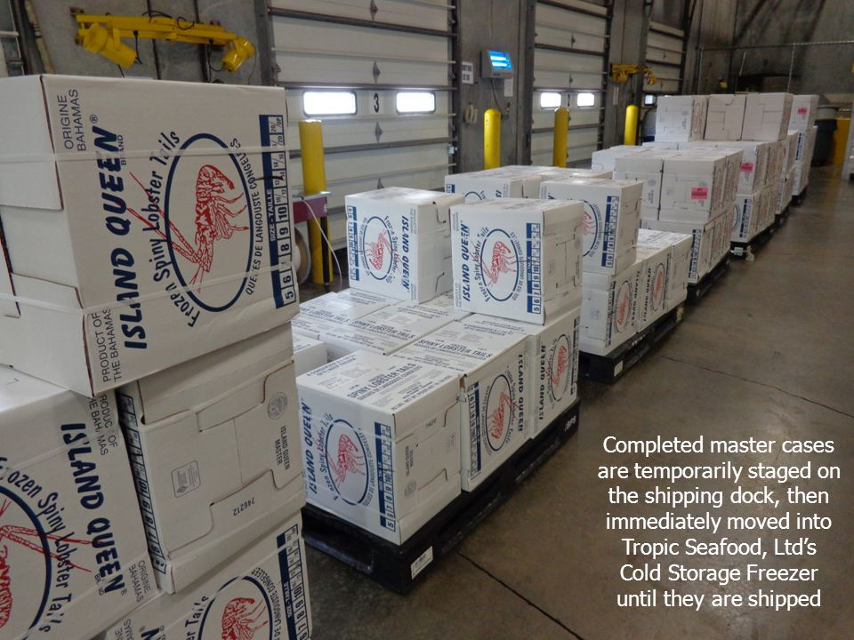 Completed master cases are temporarily staged on the shipping dock, then immediately moved into Tropic Seafood, Ltd's Cold Storage Freezer until they