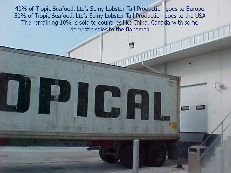 40% of Tropic Seafood, Ltd's Spiny Lobster Tail Production goes to Europe 50% of Tropic Seafood, Ltd's Spiny Lobster Tail Production goes to the USA T