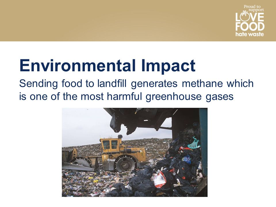 Environmental Impact Sending food to landfill generates methane which is one of the most harmful greenhouse gases