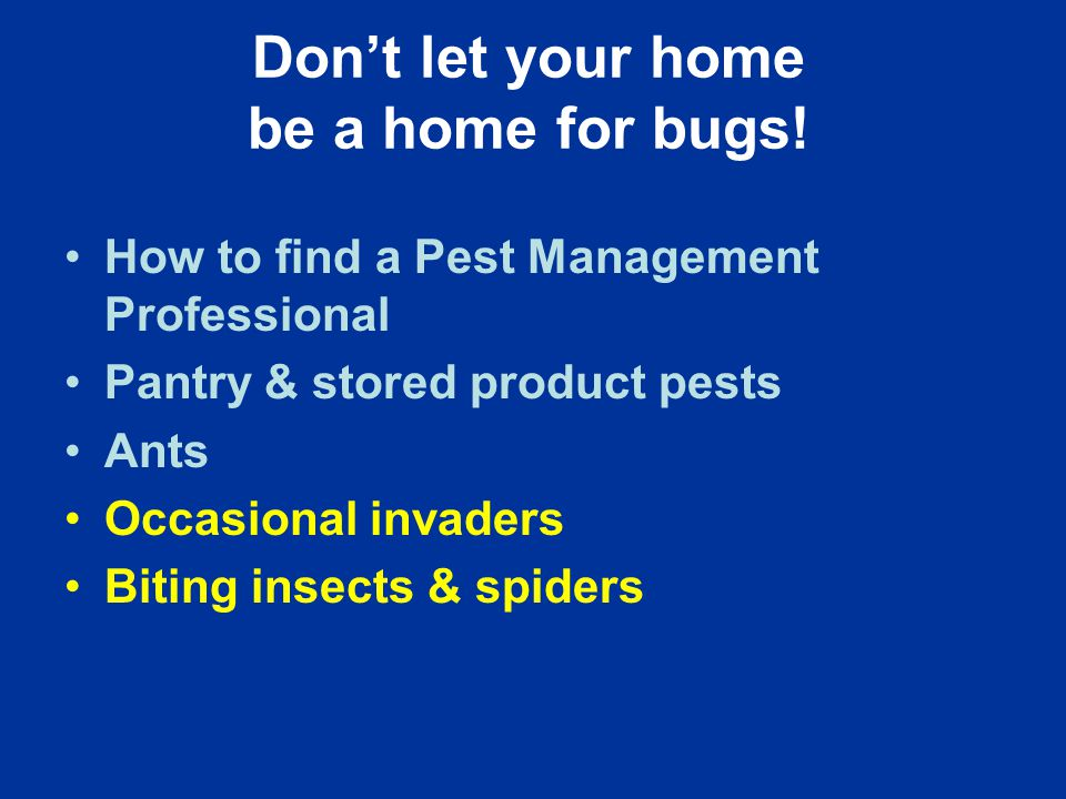 Don't let your home be a home for bugs.