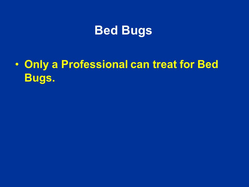 Bed Bugs Only a Professional can treat for Bed Bugs.