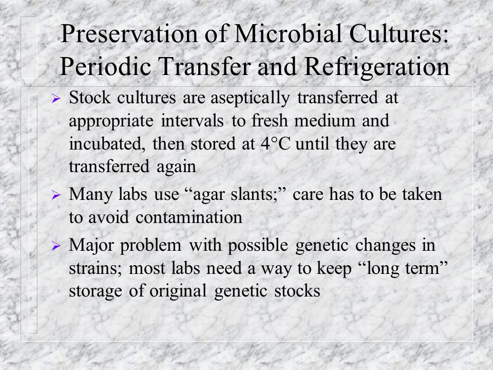 Preservation of Microbial Cultures: Periodic Transfer and Refrigeration  Stock cultures are aseptically transferred at appropriate intervals to fresh