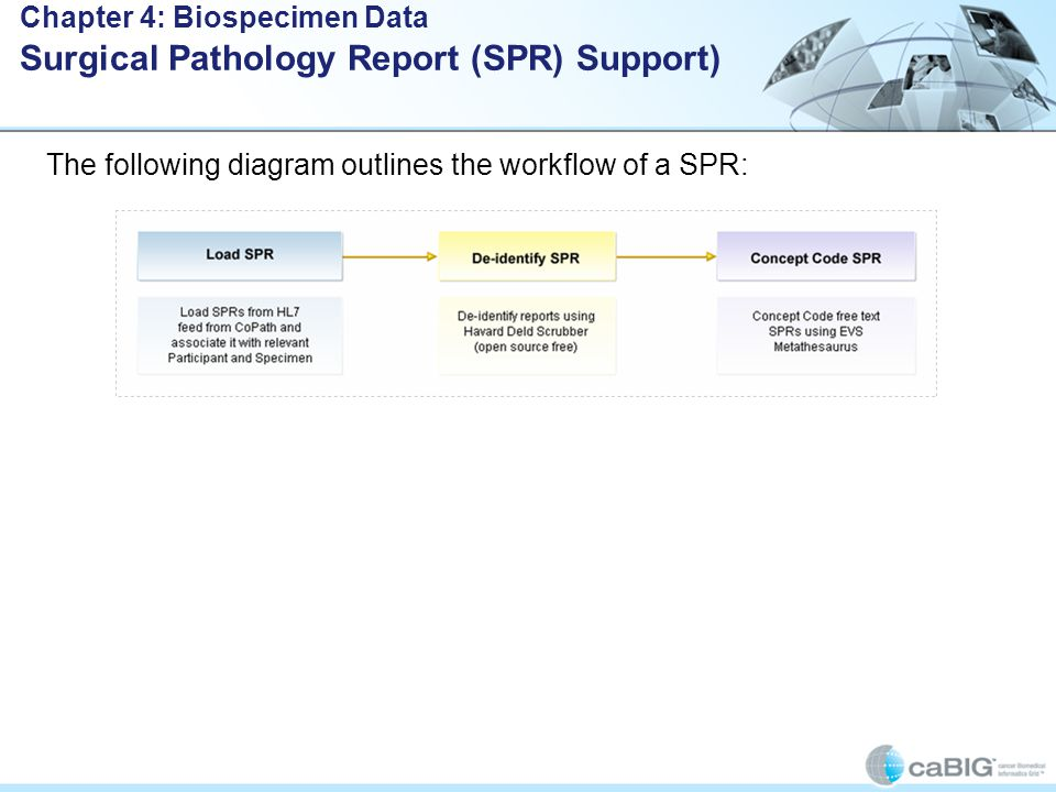 The following diagram outlines the workflow of a SPR: Chapter 4: Biospecimen Data Surgical Pathology Report (SPR) Support)