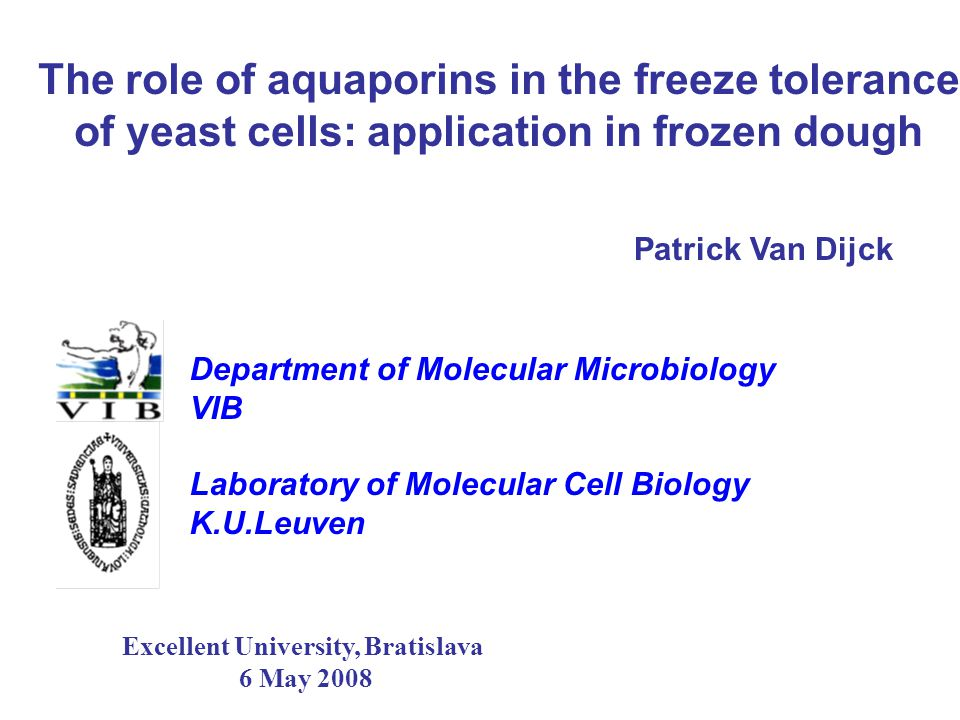 The role of aquaporins in the freeze tolerance of yeast cells: application in frozen dough Patrick Van Dijck Department of Molecular Microbiology VIB
