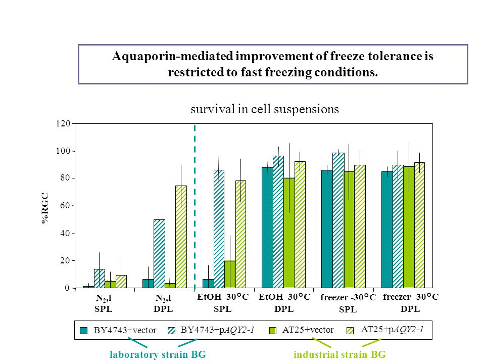 AT25+vector AT25+pAQY2-1 BY4743+vector BY4743+pAQY2-1 Aquaporin-mediated improvement of freeze tolerance is restricted to fast freezing conditions. la