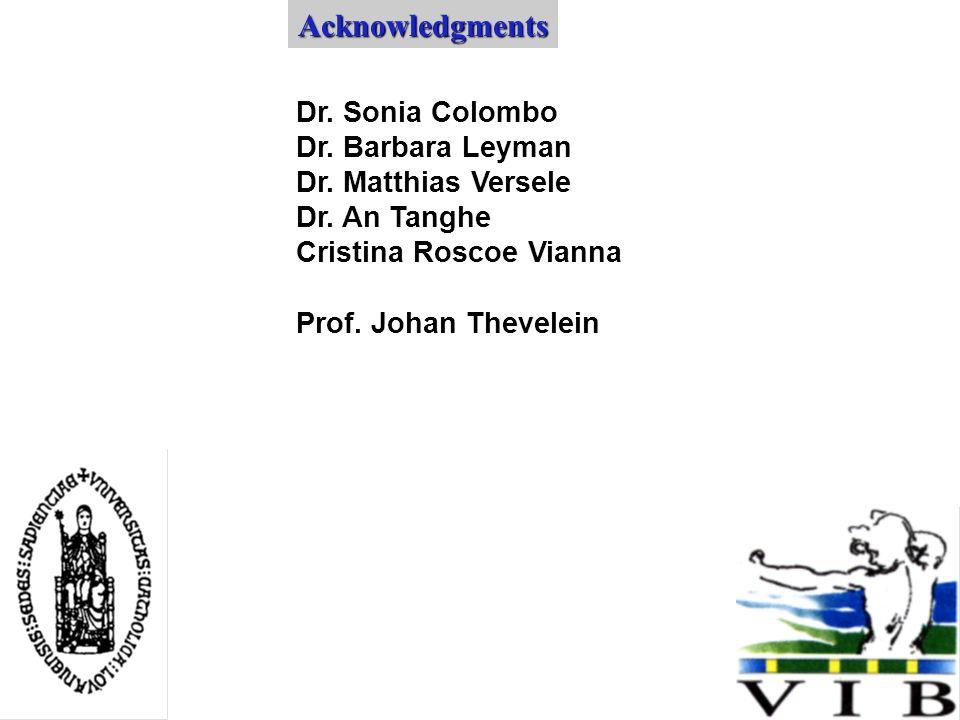 Dr. Sonia Colombo Dr. Barbara Leyman Dr. Matthias Versele Dr.