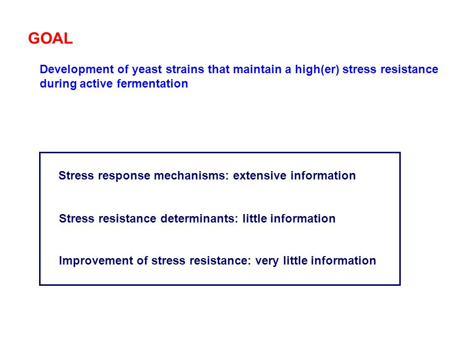 Development of yeast strains that maintain a high(er) stress resistance during active fermentation Stress response mechanisms: extensive information G