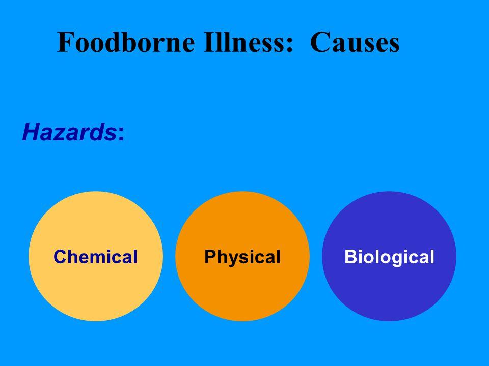 Foodborne Illness: Causes Hazards: harmful substances that when found in food can cause foodborne illness BiologicalChemicalPhysical