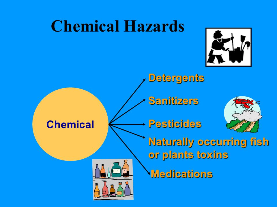Chemical Hazards Chemical Detergents Sanitizers Pesticides Naturally occurring fish or plants toxins Medications