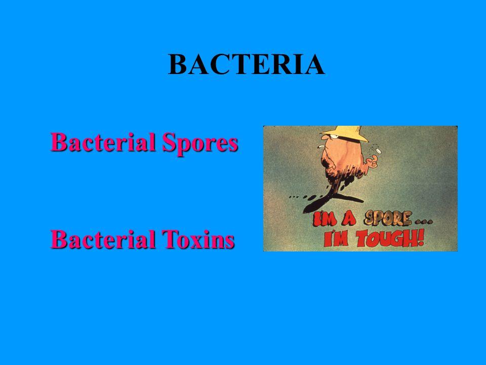 BACTERIA Bacterial Spores Bacterial Toxins