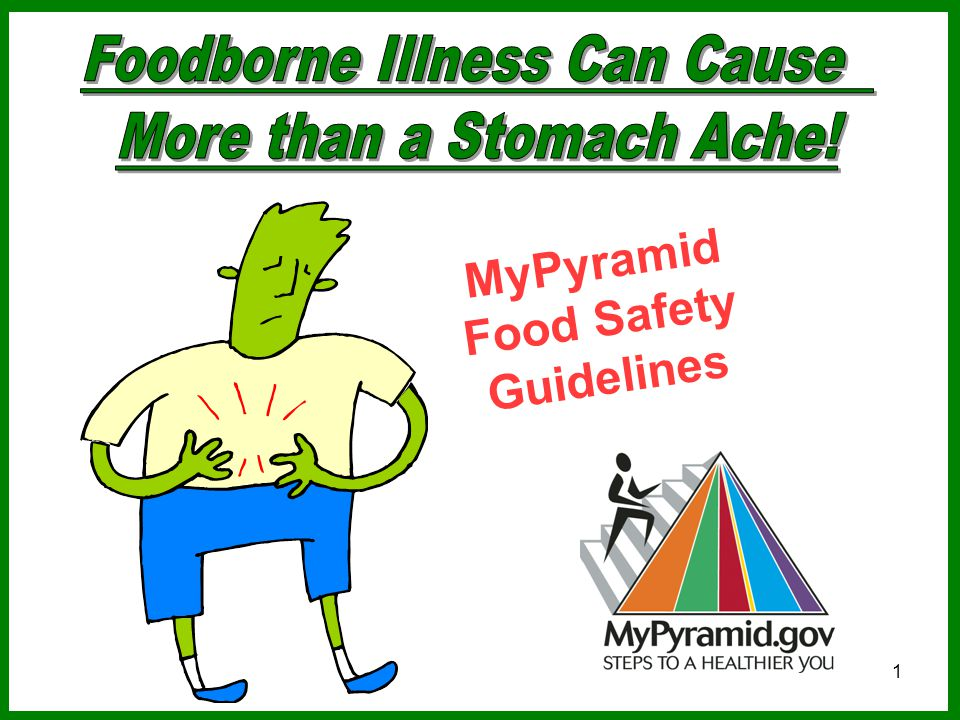 1 MyPyramid Food Safety Guidelines