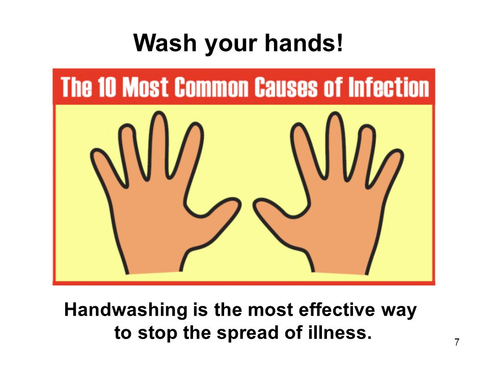 7 Wash your hands! Handwashing is the most effective way to stop the spread of illness.