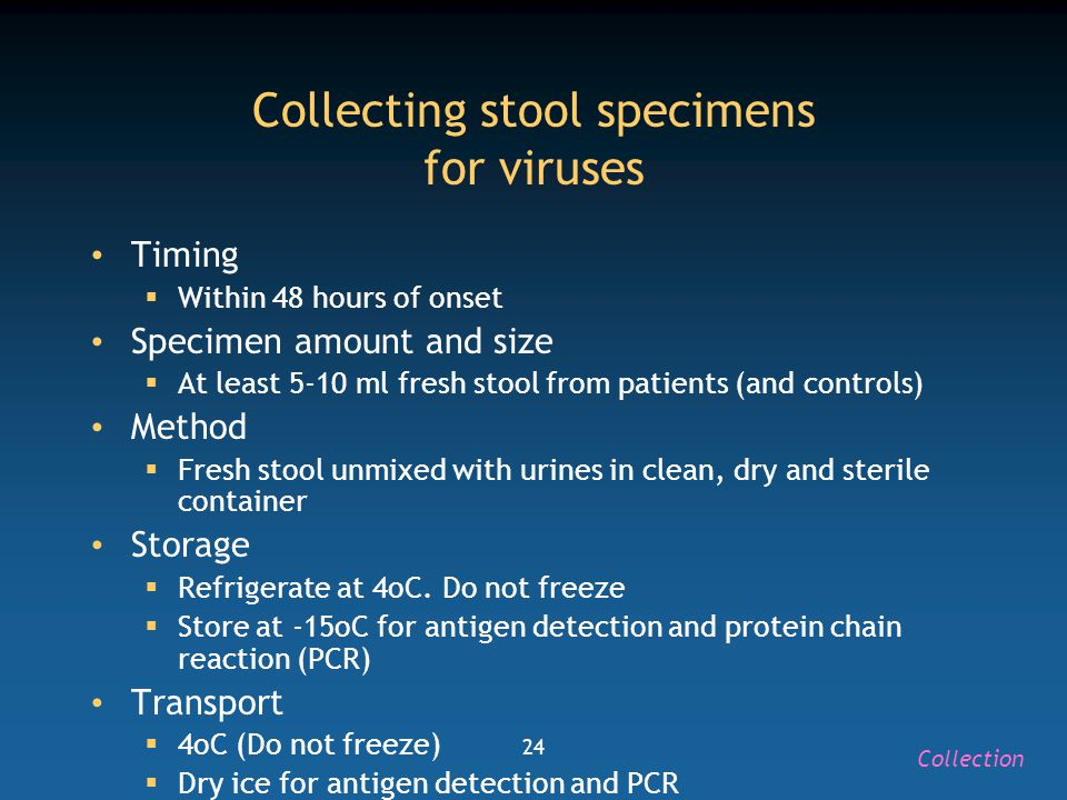 24 Collecting stool specimens for viruses Timing  Within 48 hours of onset Specimen amount and size  At least 5-10 ml fresh stool from patients (and