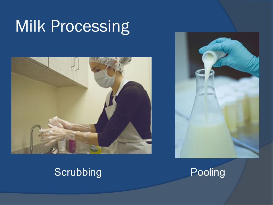 Milk Processing Scrubbing Pooling