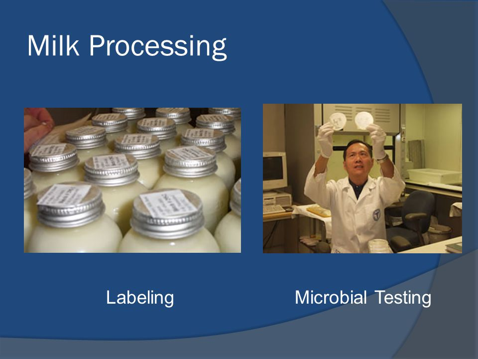 Milk Processing Labeling Microbial Testing