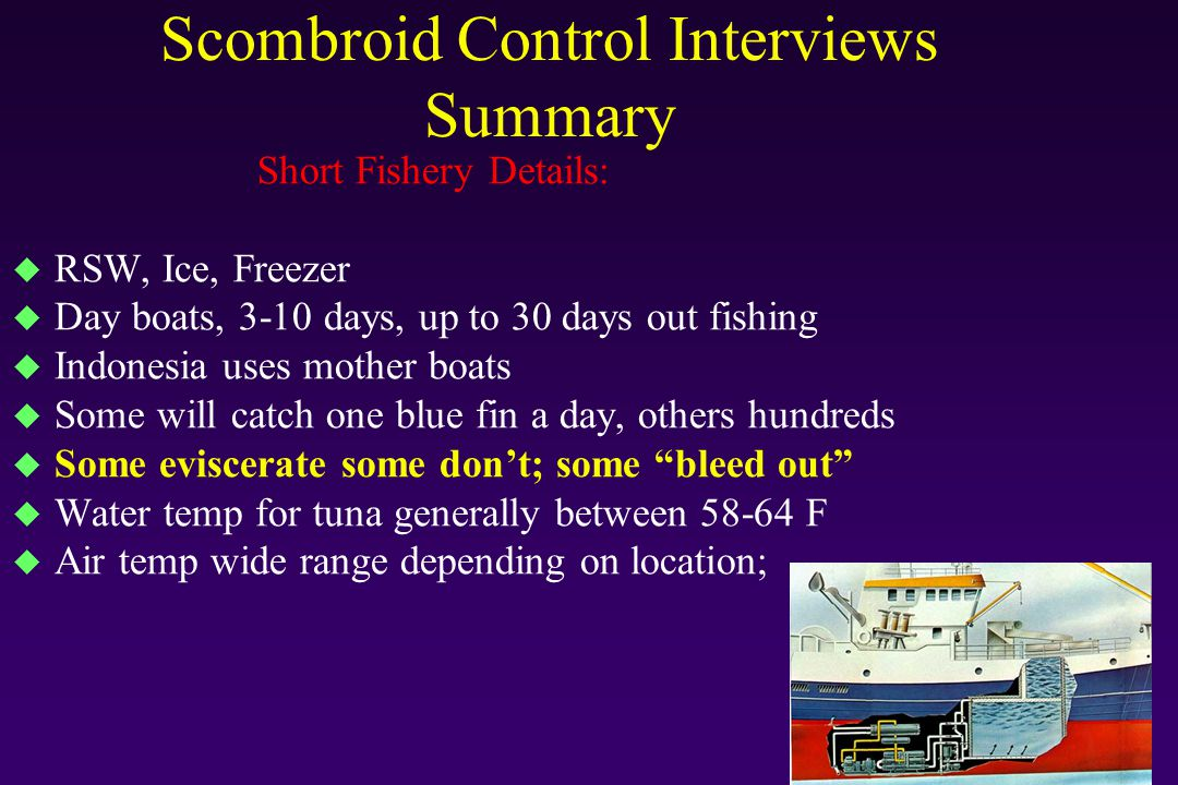 Scombroid Control Interviews Very Preliminary Summary General Control Comments: u Only two fishermen said they kept records u And then only one said took temp of fish on boat and holding temperatures u Most processors say they take the information from the fishermen for the records u Two processors said they require the fishermen to hand them records u Rest said the fishermen would not listen to them u Not much difference between what fishermen/processors said