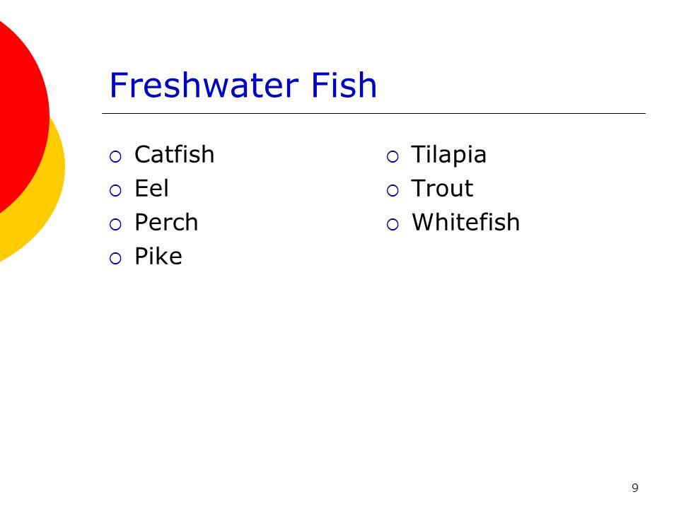 9 Freshwater Fish  Catfish  Eel  Perch  Pike  Tilapia  Trout  Whitefish