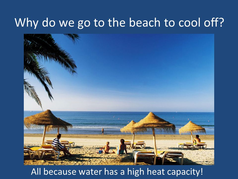 Why do we go to the beach to cool off? All because water has a high heat capacity!