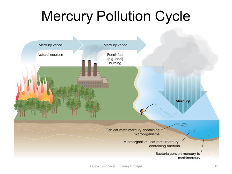 Mercury Pollution Cycle Laura Coronado Laney College15