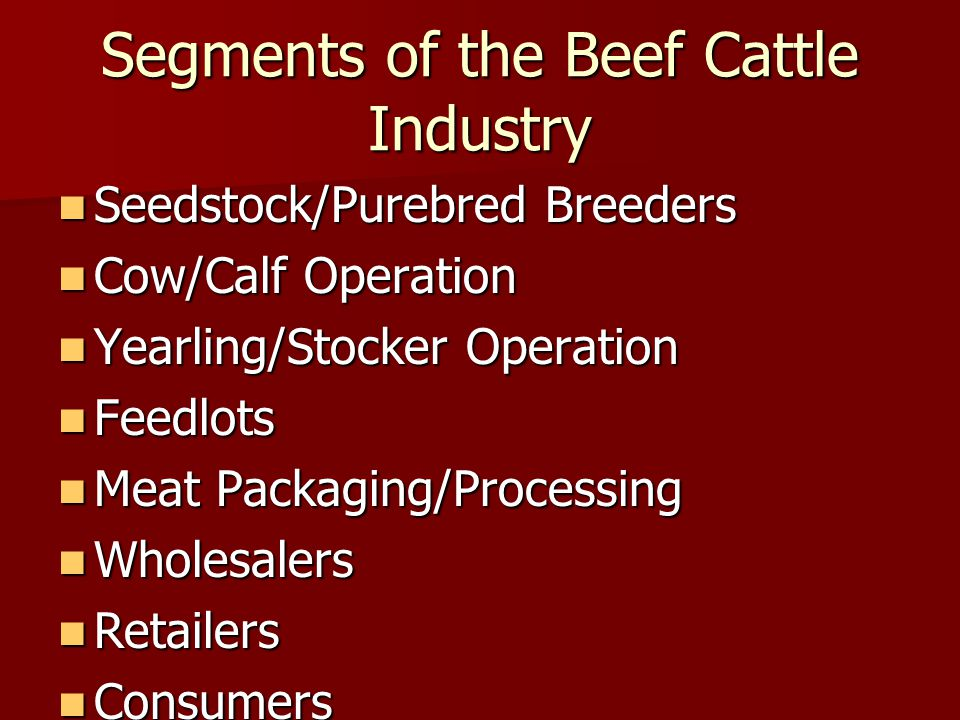 Segments of the Beef Cattle Industry Seedstock/Purebred Breeders Seedstock/Purebred Breeders Cow/Calf Operation Cow/Calf Operation Yearling/Stocker Operation Yearling/Stocker Operation Feedlots Feedlots Meat Packaging/Processing Meat Packaging/Processing Wholesalers Wholesalers Retailers Retailers Consumers Consumers