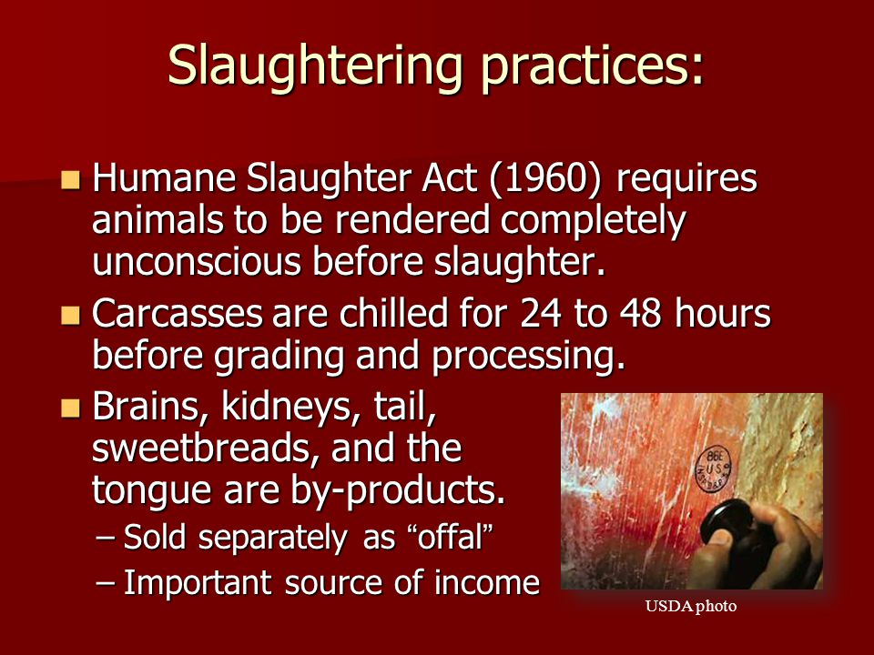 Slaughtering practices: Humane Slaughter Act (1960) requires animals to be rendered completely unconscious before slaughter.