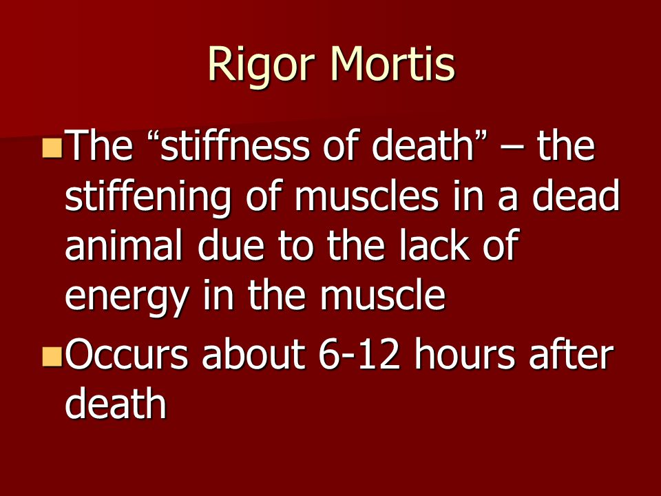 Rigor Mortis The stiffness of death – the stiffening of muscles in a dead animal due to the lack of energy in the muscle The stiffness of death – the stiffening of muscles in a dead animal due to the lack of energy in the muscle Occurs about 6-12 hours after death Occurs about 6-12 hours after death