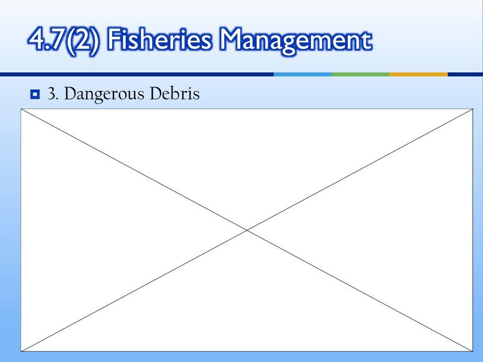  3. Dangerous Debris