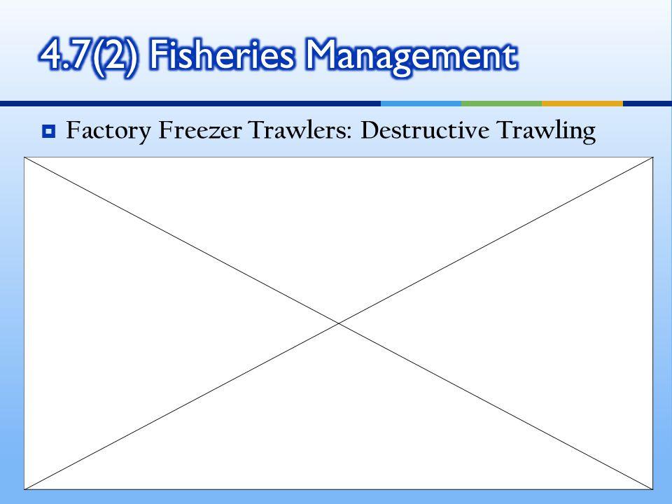  Factory Freezer Trawlers: Destructive Trawling