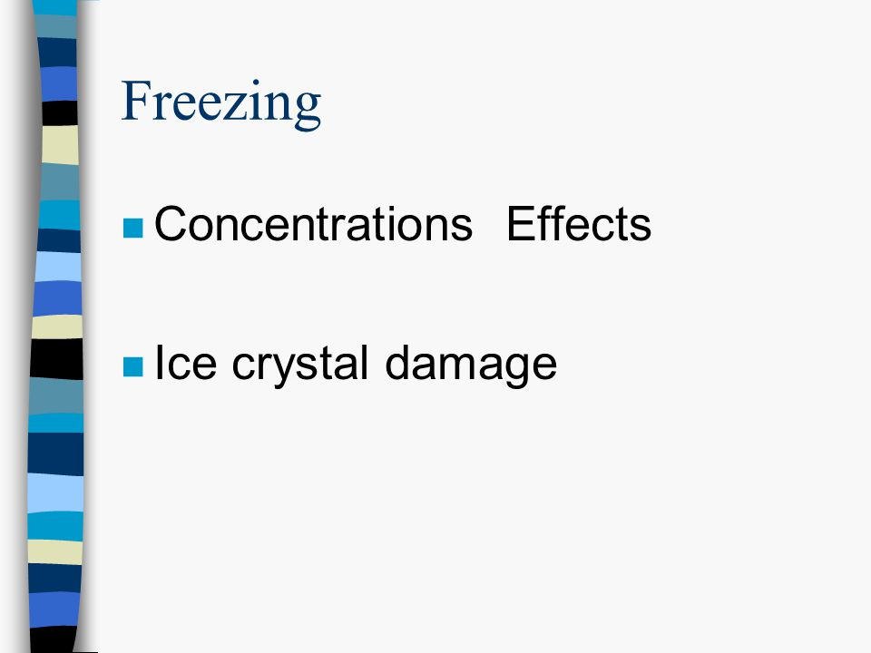 Freezing n Concentrations Effects n Ice crystal damage