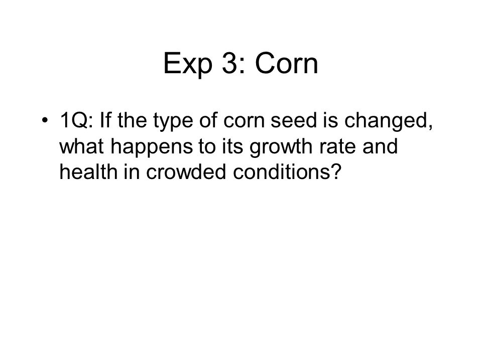 Exp 3: Corn 1Q: If the type of corn seed is changed, what happens to its growth rate and health in crowded conditions