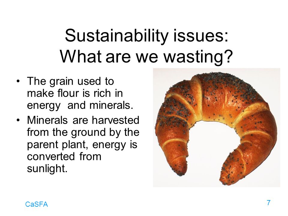 CaSFA 7 Sustainability issues: What are we wasting? The grain used to make flour is rich in energy and minerals. Minerals are harvested from the groun