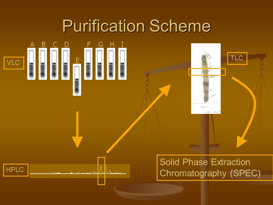 Purification Scheme Solid Phase Extraction Chromatography (SPEC) VLC HPLC TLC ABCD E FGHI